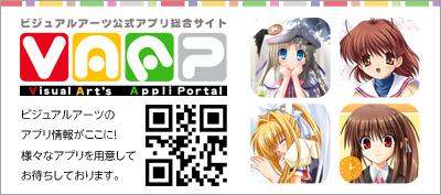 vaap_keyinfo_image.jpg